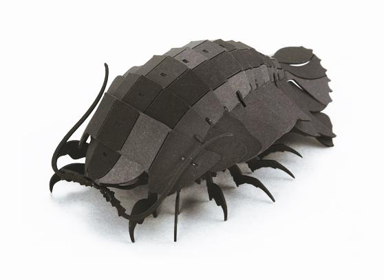 ダイオウグソクムシ(ブラック)